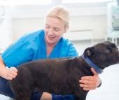 Sabine Dehof – ferdigutdannet osteopat